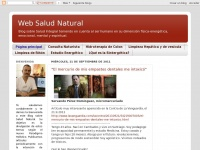 websaludnatural.blogspot.com