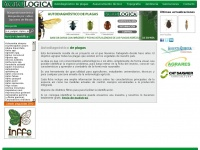 agrologica.es Thumbnail
