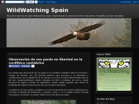 wildwatchingspain.blogspot.com