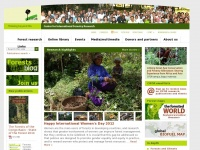 Cifor.org - Center for International Forestry Research (CIFOR)