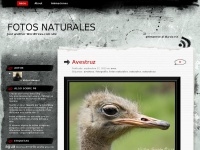 fotosnaturales.wordpress.com