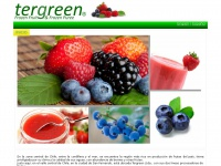 tergreen.cl