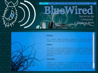 bluewired.info
