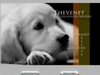 goldenretrieverthevenet.com