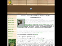 tropicalbamboo.org