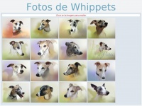 whippets.es