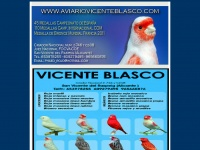 Aviariovicenteblasco.com - AVIARIO VICENTE BLASCO