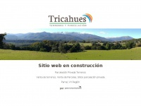 tricahues.cl