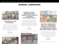 morralcampesino.wordpress.com