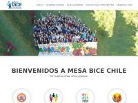 mesabicechile.cl