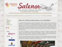 salenor.es
