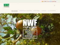 Networkproject.es - NWF Network » Translational Initiative for the Promotion of Preneurial Skills and Attitudes in the Non-Wood Forest Sector