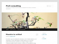 prof-consulting.net
