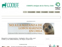 codeff.cl