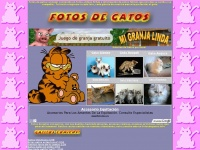 FotosDeGatos - Health, Fashion, Beauty News