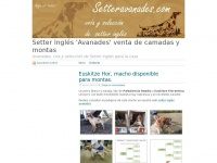 setteravanades.wordpress.com