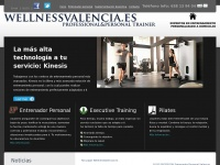 wellnessvalencia.es