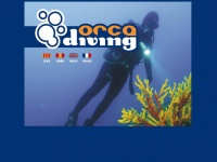 orcadiving.net