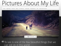 picturesaboutmylife.com