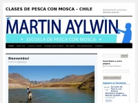 martinpescadorfishingschool.com Thumbnail