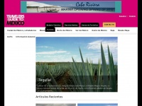 travelersguidemexico.com
